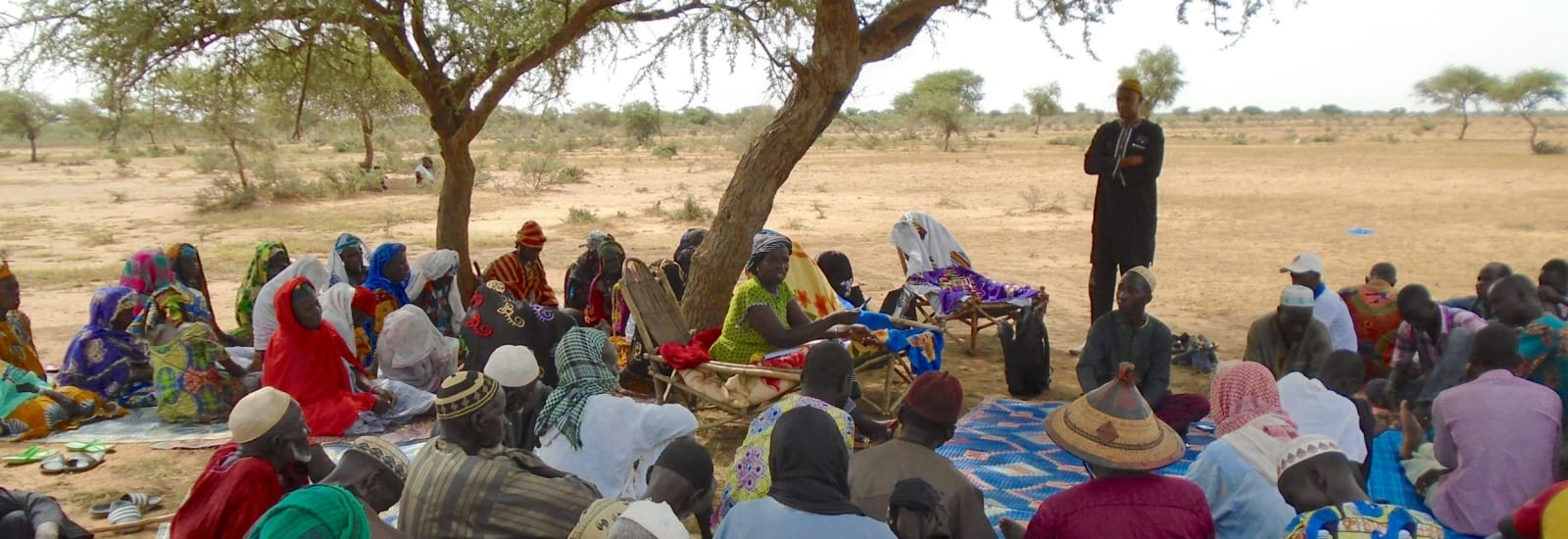 Rehabilitation of the Sahel (REACH) – Documents