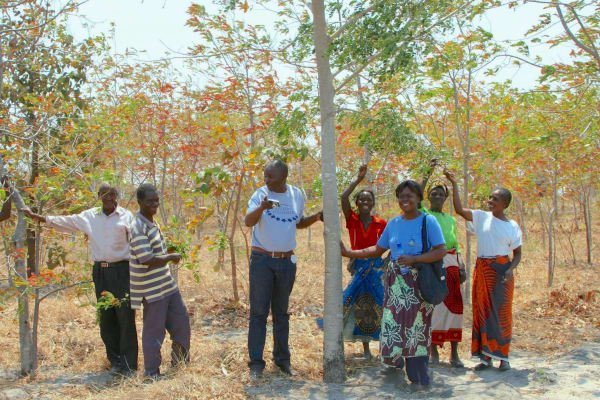 Trees of Hope – Malawi